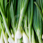 Green Onions | Difference Between