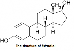 Estradiol vs Estriol | Difference Between