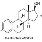 Estriol vs Estradiol   Difference Between