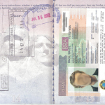 Difference Between Visa and Permit