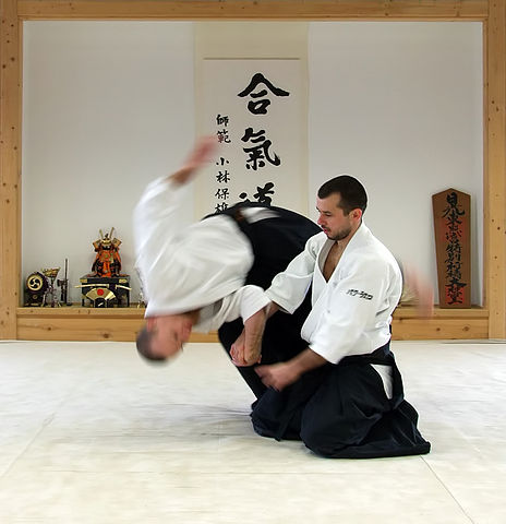 Difference Between Aikido and Hapkido