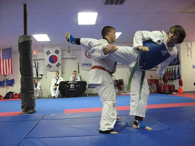Aikido vs Hapkido
