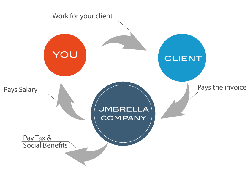 Difference Between Umbrella Company and Limited Company