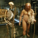 Neanderthals vs Humans