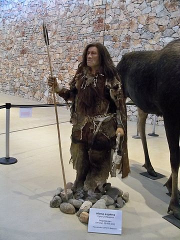 Difference Between Neanderthals and Homo Sapiens (Modern Humans)