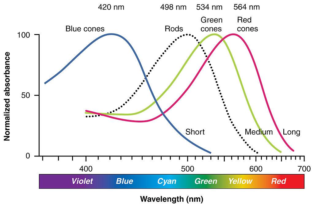 red light vs blue light