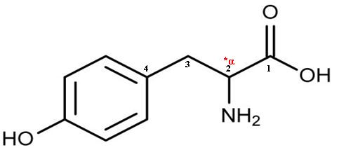 l-tyrosine vs tyrosine