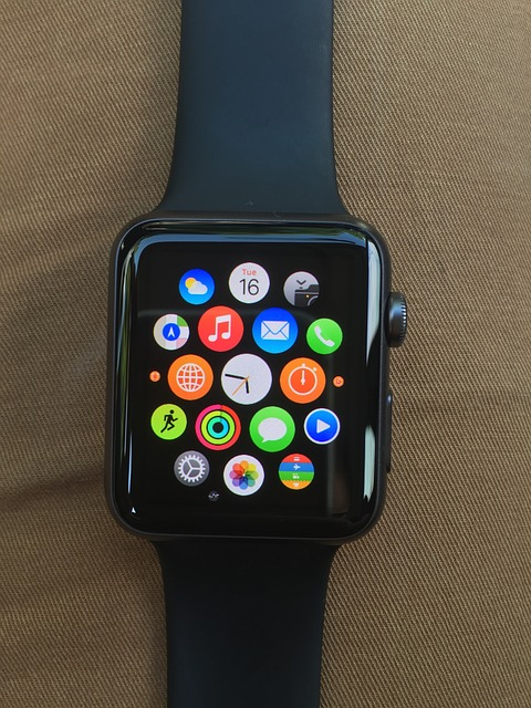 Difference between Samsung Gear 2 and Apple watch