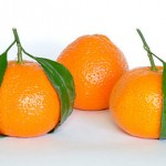 Difference between clementine and mandarin