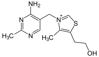 Main Difference - Thiamine Mononitrate vs Thiamine Hydrochloride