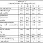 Difference Between Cash Budget and Projected Income Statement