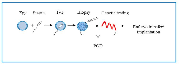 Key Difference - PGS vsPGD
