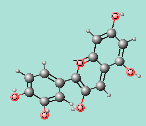 Main Difference - Anthocyanin vs Anthocyanidin