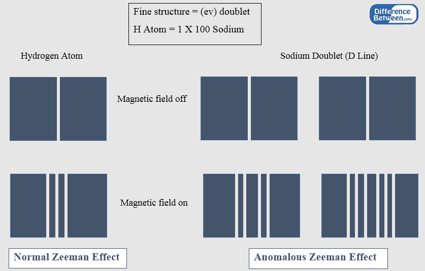Difference Between Normal and Anomalous Zeeman Effect