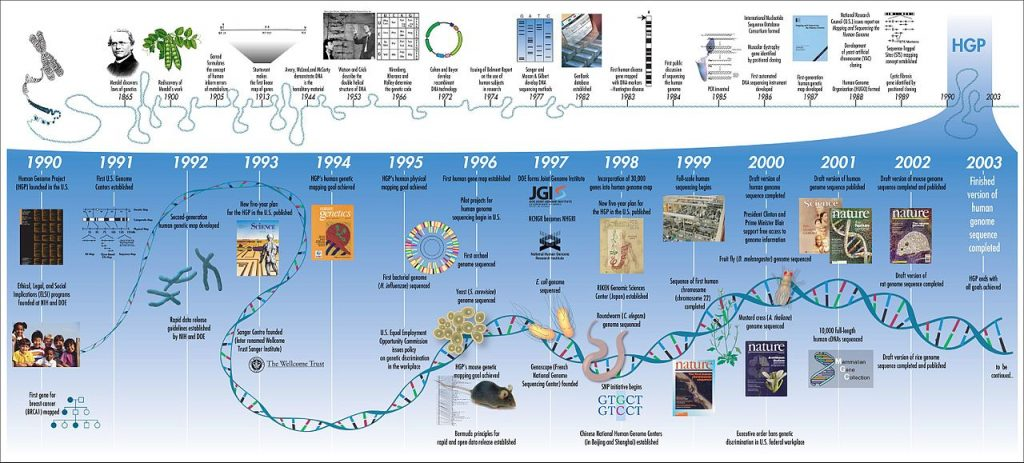 Difference Between Genome and Exome