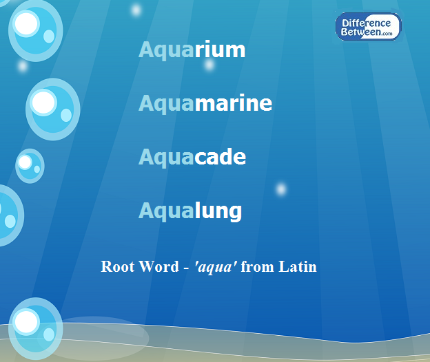Key Difference - Base Word vs Root Word
