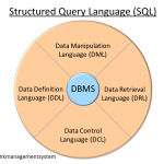 Difference Between DDL and DML