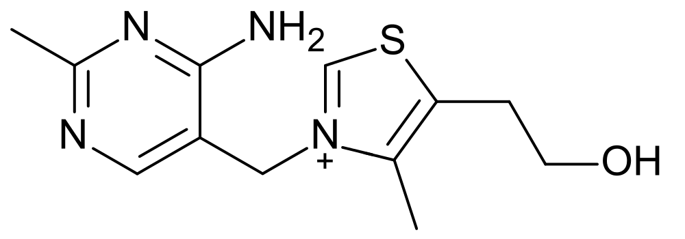 Key Difference Between Homocyclic and Heterocyclic Compounds